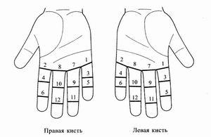 Борщенко И. Как избавиться от боли в суставах рук - Все для студента